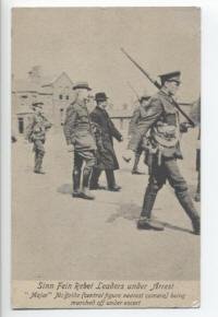 The arrest of John McBride